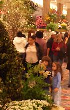 ニューヨークの春を彩るMacy\'sのフラワーショー_b0007805_12241990.jpg