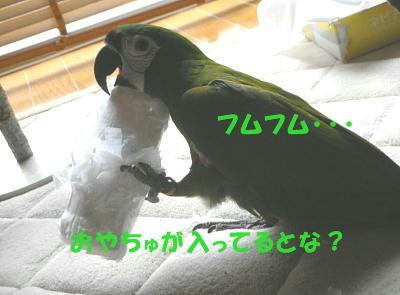 f0132055_21192841.jpg