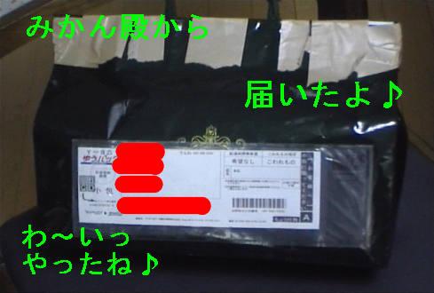 f0123589_14174947.jpg