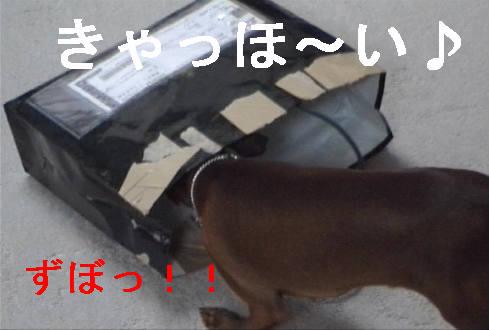 f0123589_14335686.jpg