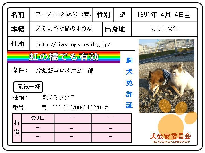 b0097121_2159250.jpg