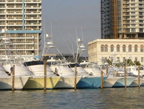すごいマイアミボートショーと、まったりマイアミビーチレポート  [カジキ マグロ トローリング]_f0009039_15533988.jpg