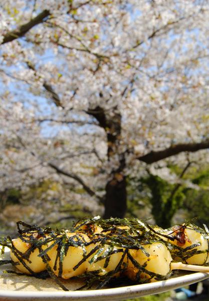 横浜・三渓園でお花見_a0003650_17185192.jpg