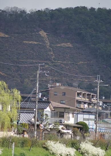 f0102363_1515925.jpg