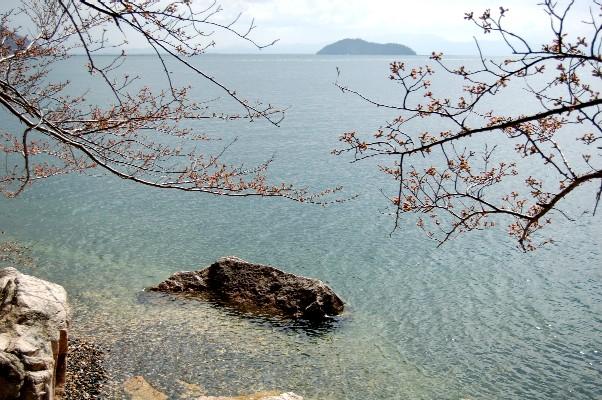 奥琵琶湖               4月3日_c0009275_0584534.jpg