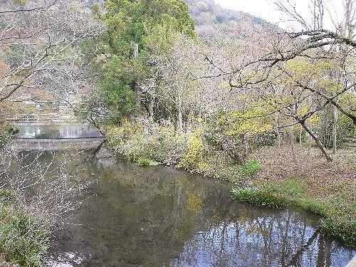 春の湯布院  亀の井別荘・天井桟敷。 *。:☆.。†  _a0053662_0195763.jpg