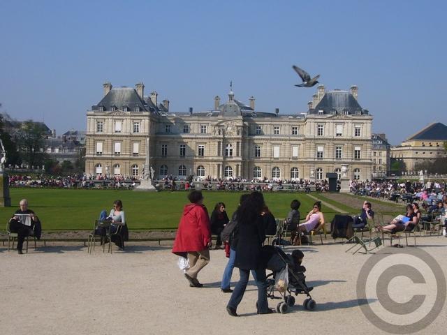 ■最近のリュクサンブルグ公園(PARIS)_a0008105_21325779.jpg