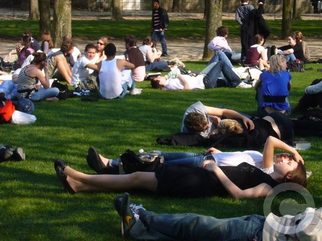 ■最近のリュクサンブルグ公園(PARIS)_a0008105_2133512.jpg