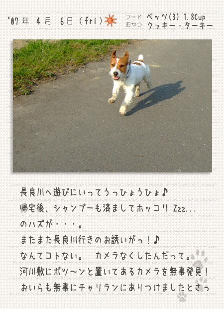 b0040323_036568.jpg