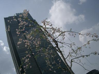 東京ミッドタウン_c0079828_21365325.jpg