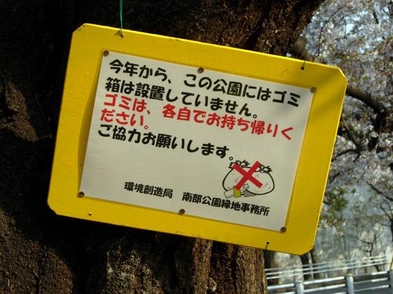 桜の満開の下・・・は?_c0035838_1541024.jpg