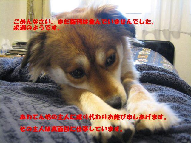 b0054391_12113417.jpg