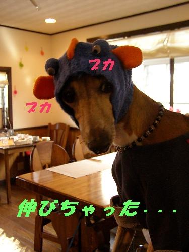 b0067012_17484692.jpg