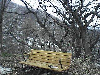 a0004359_2011361.jpg