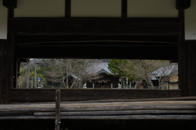 上の窓の反対側から撮ってみました。奥には神社と、葉が付いていないもみじの木。道路標識。一年間通い続けて初めて反対側に行ったらまるで別世界。どうして気づかなかったものか(笑)
