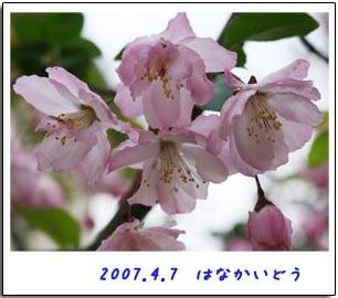 b0024183_18311510.jpg