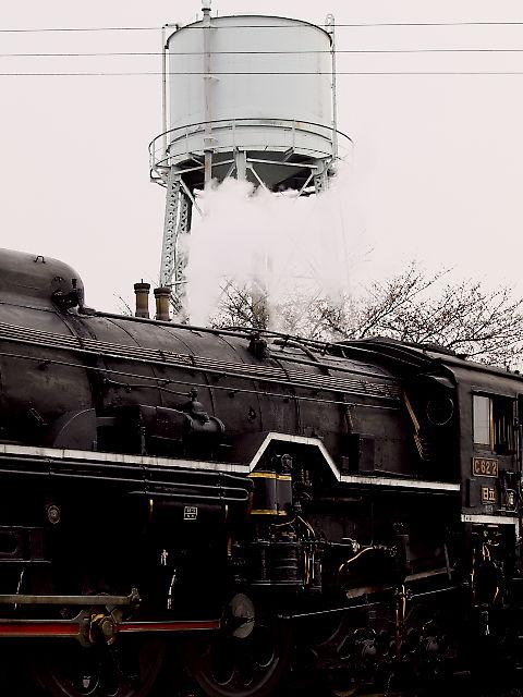 梅小路公園:梅小路蒸気機関車館 その2_d0087407_21433027.jpg