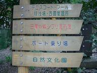 井の頭公園・名残の桜~_c0079828_14391224.jpg