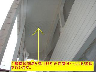 f0031037_17385742.jpg