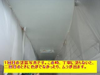 f0031037_1739797.jpg