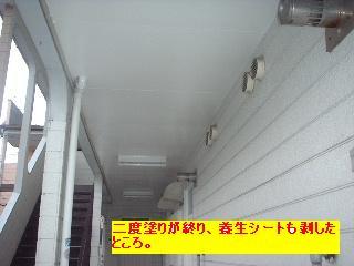 f0031037_1740736.jpg