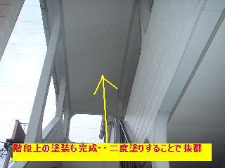 f0031037_1743419.jpg