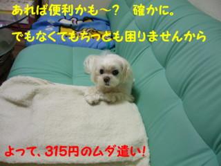 f0005727_1620336.jpg