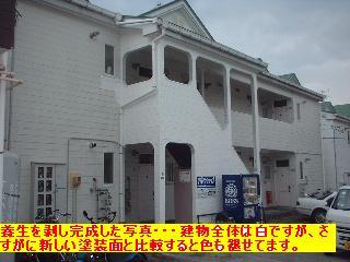 賃貸・外壁の部分塗装_f0031037_1959729.jpg