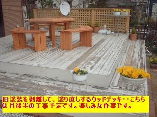 f0031037_2013444.jpg