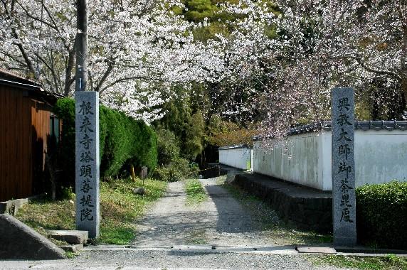 花のある風景_b0093754_0285236.jpg