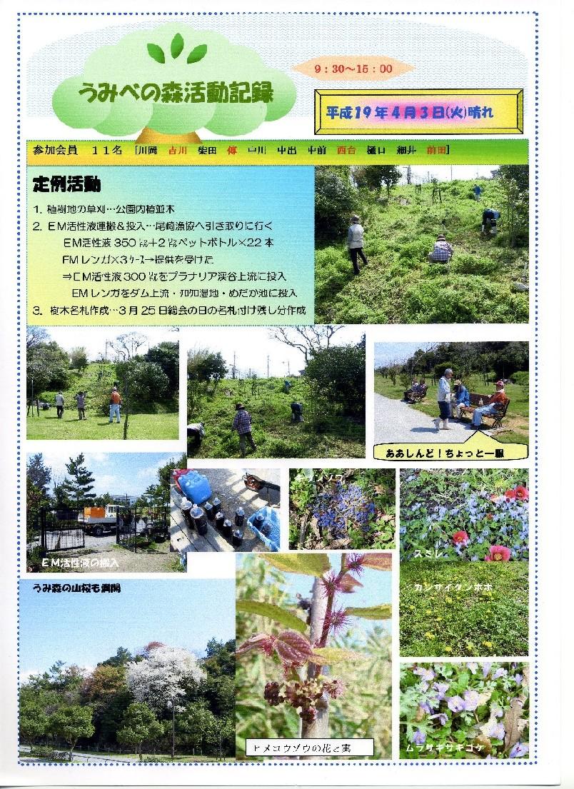 ヤブツバキ植樹周辺の草刈り・・・定例活動日_c0108460_0571062.jpg