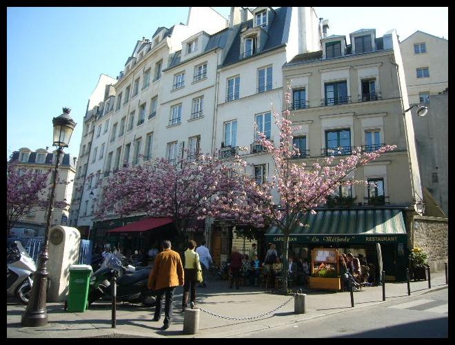 ■街角のキャフェ(パリ)_a0014299_17375159.jpg