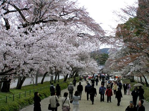 京都醍醐寺_e0048413_22323178.jpg
