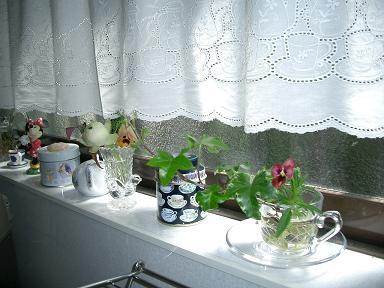 春のキッチンは・・・_c0079828_18212272.jpg
