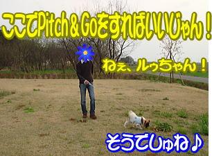 f0011845_933362.jpg