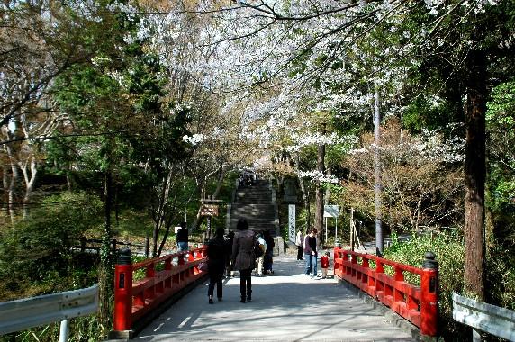 花のある風景_b0093754_046334.jpg