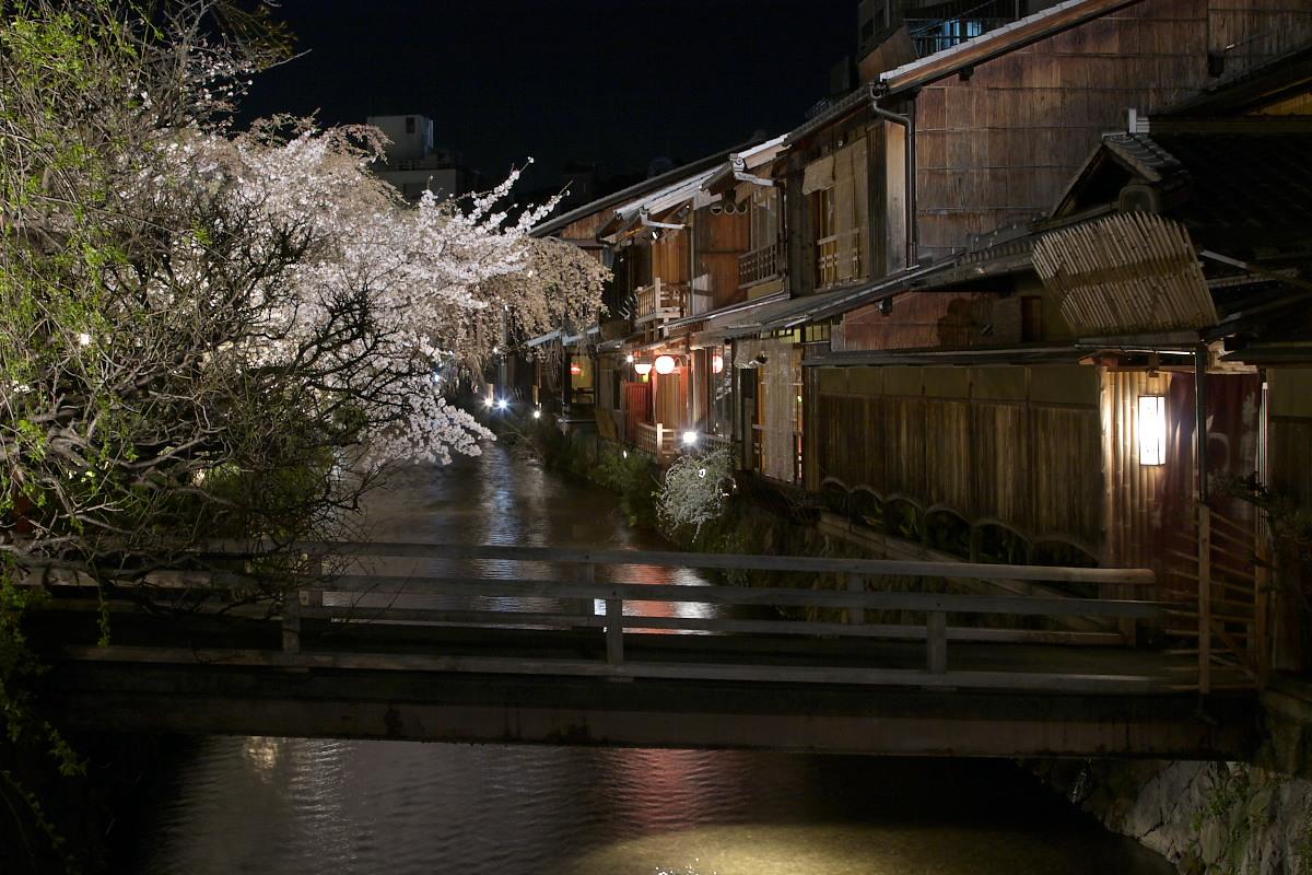 京都 夜桜 スナップ_f0021869_16172977.jpg