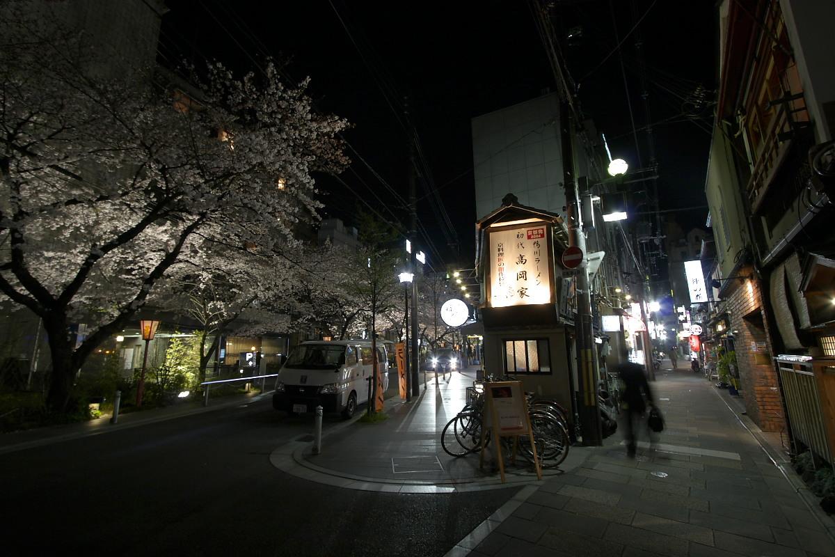 京都 夜桜 スナップ_f0021869_16225534.jpg
