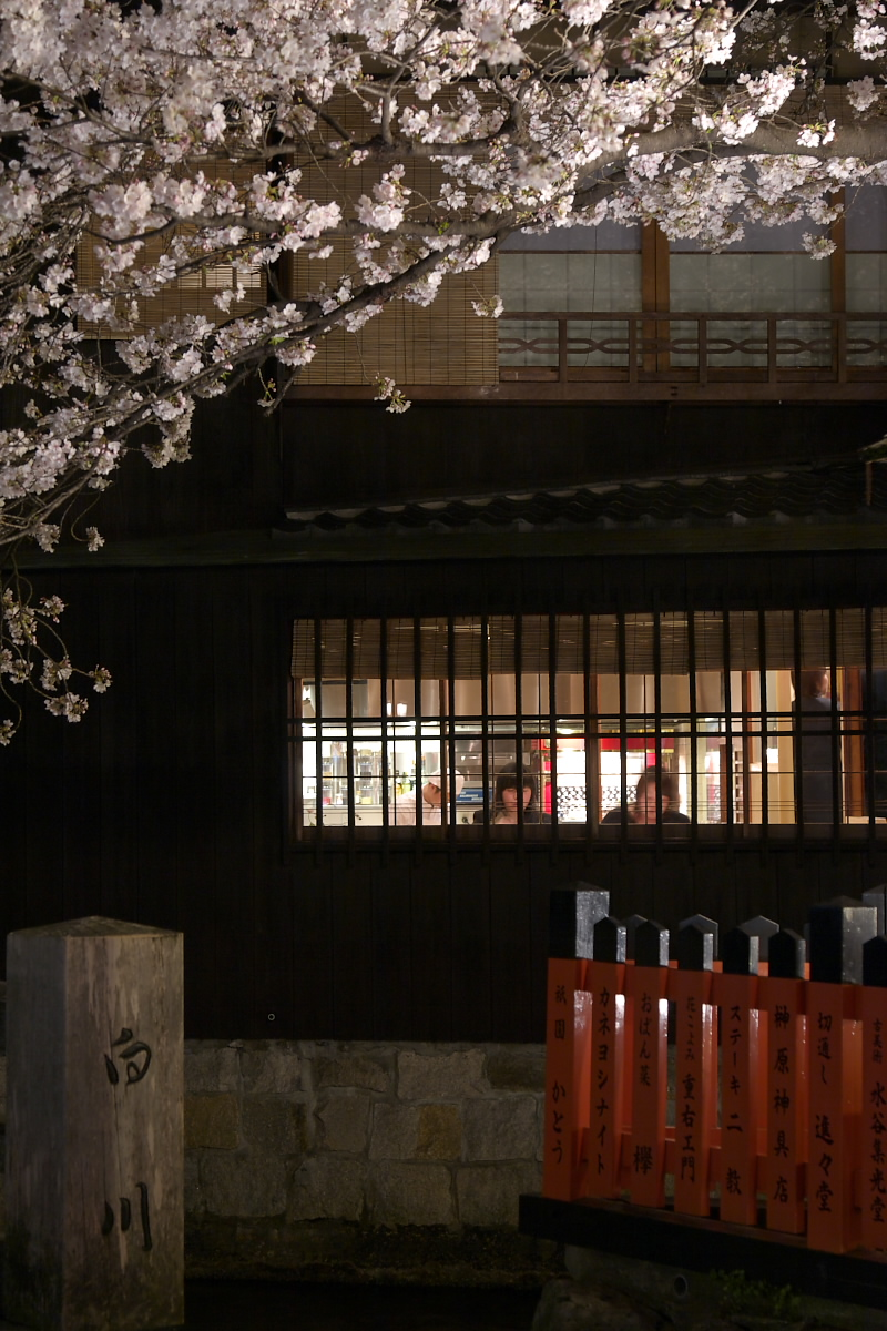 京都 夜桜 スナップ_f0021869_16262865.jpg
