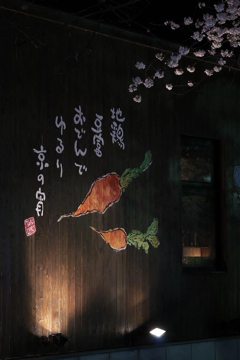 京都 夜桜 スナップ_f0021869_16305066.jpg