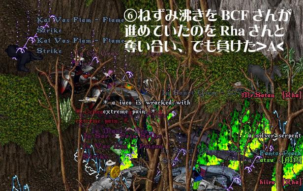d0076490_963812.jpg