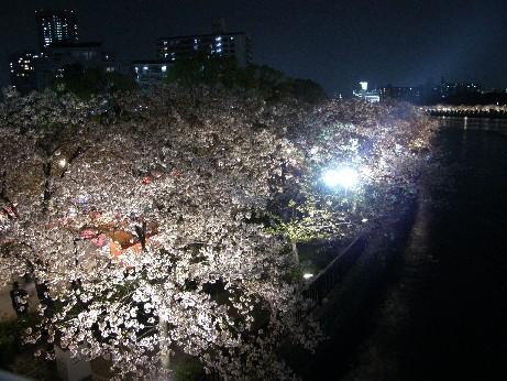 通り抜けの桜 続報_f0128542_0144361.jpg