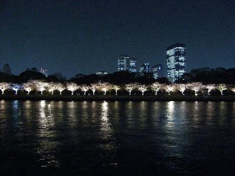 通り抜けの桜 続報_f0128542_0351472.jpg