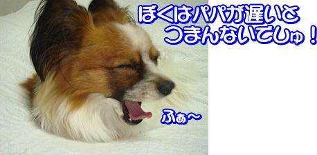 f0011845_17671.jpg