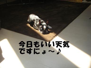 f0110199_16101939.jpg