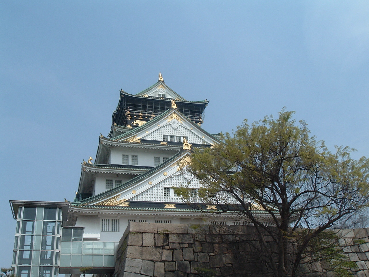 桜咲く_f0032130_2124518.jpg