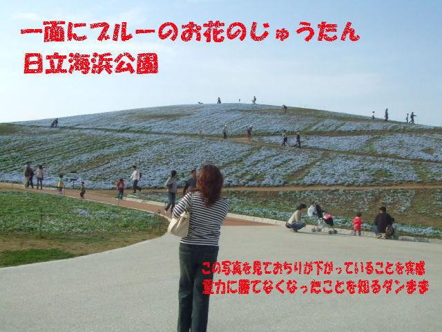 f0059334_101374.jpg