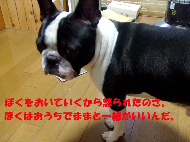 f0059334_1075639.jpg