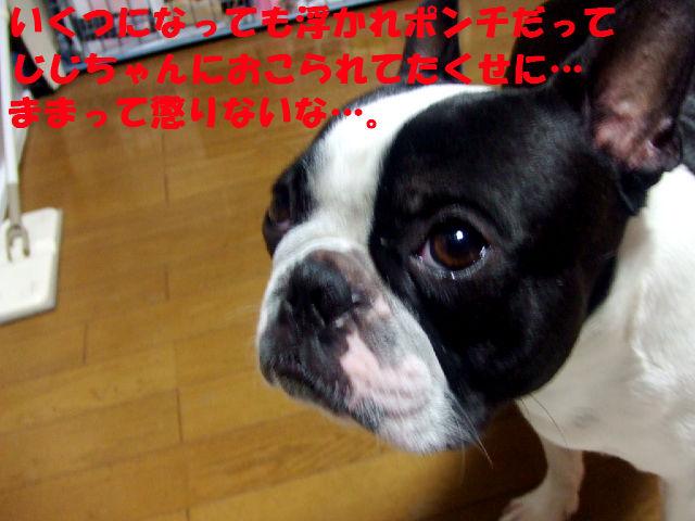 f0059334_94522100.jpg