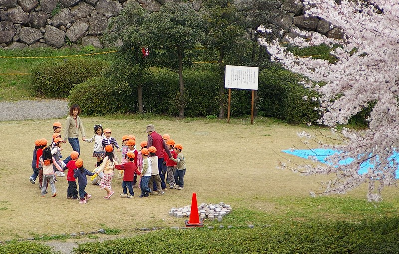 桜満開の金沢_d0043136_19255882.jpg